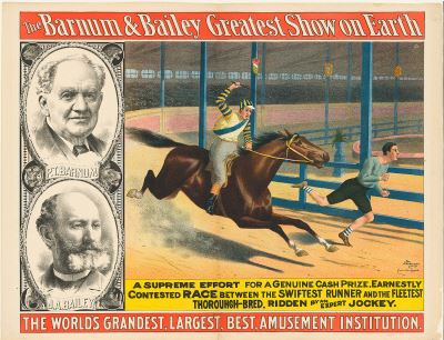 Barnum and Bailey Circus Horse