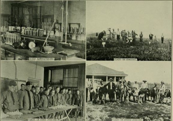 1913 Revilee_Students doing ag work