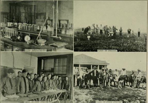 1913 Revilee_Students doing ag work