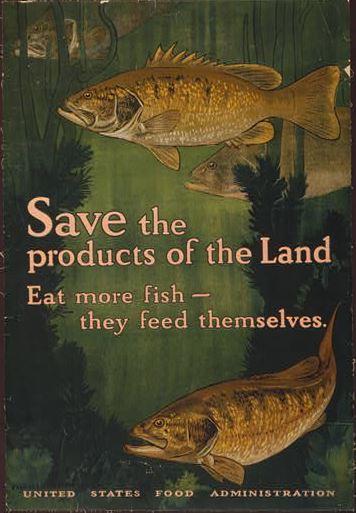 Eat More Fish