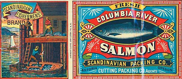 Scandanavian Salmon