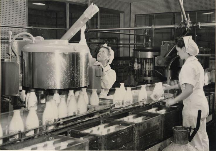 Cropped Milk Bottling.JPG