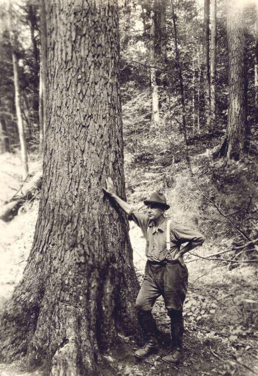 Man standing next to big tree.JPG